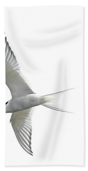 Arctic Tern Flying In Mist Hand Towel