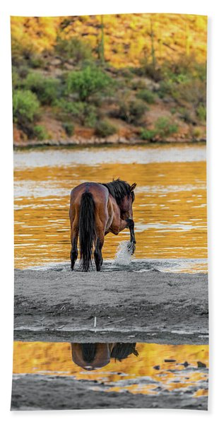 Arizona Wild Horse Playing In Water Hand Towel
