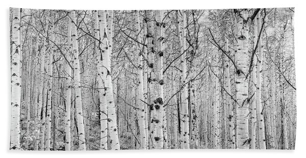 Hand Towel featuring the photograph Aspens In High Key by John De Bord