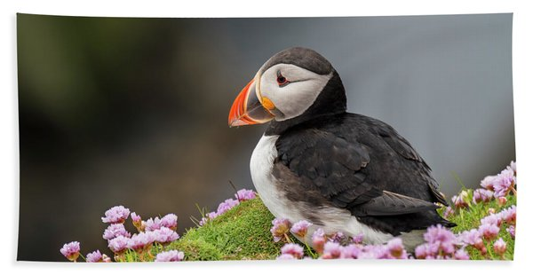 Atlantic Puffin Hand Towel