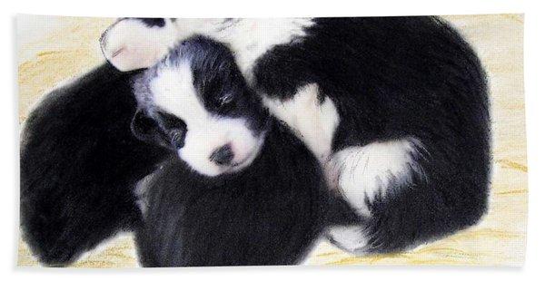 Australian Cattle Dog Puppies Hand Towel