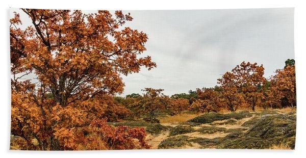Autumn Oaks 3 Hand Towel