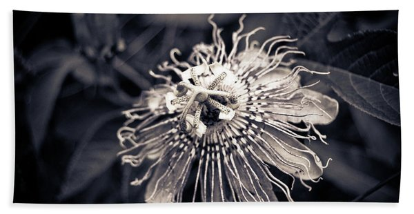 Clematis Flower Bloom Hand Towel