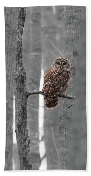 Barred Owl In Winter Woods #1 Bath Towel