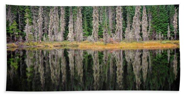 Beauty In Idaho Bog Hand Towel