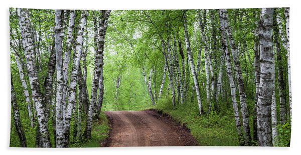 Bath Towel featuring the photograph Birch Tree Forest Path #3 by Patti Deters
