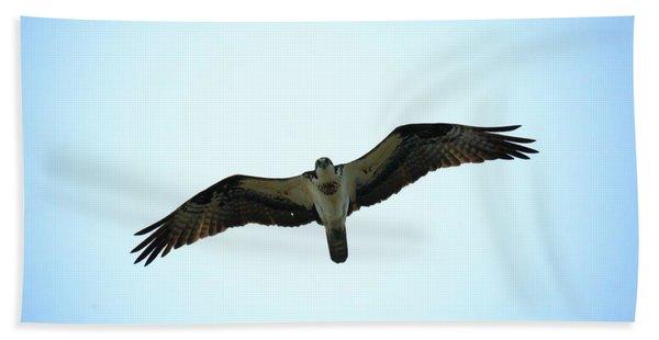 Bird Of Prey Hand Towel