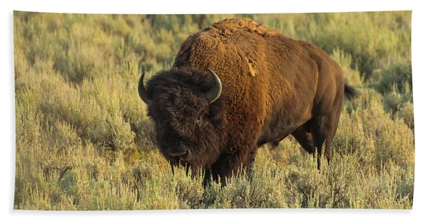 Bison Hand Towel