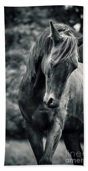 Black And White Portrait Of Horse Bath Towel