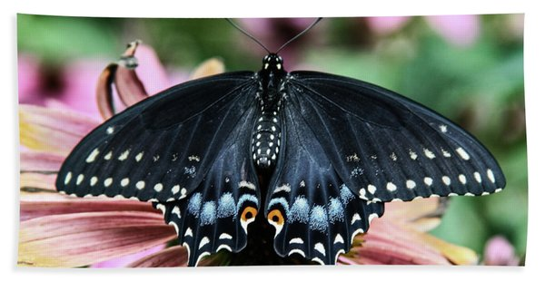 Black Swallowtail 3 Hand Towel