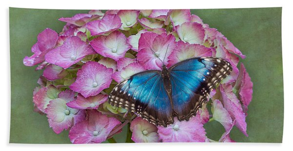 Bath Towel featuring the photograph Blue Morpho Butterfly On Pink Hydrangea by Patti Deters