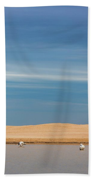 Blue Sky Pelicans Hand Towel