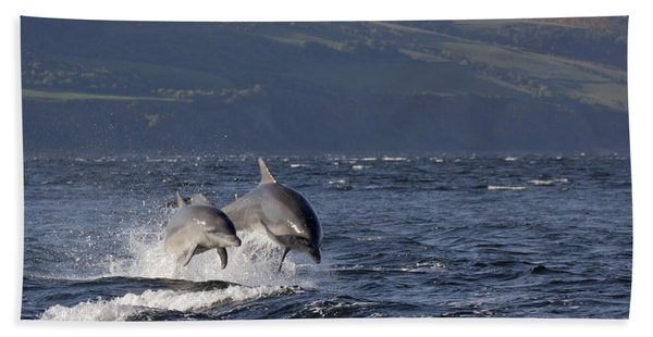 Bottlenose Dolphins Leaping - Scotland  #37 Bath Towel