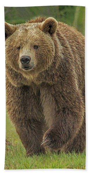 Bath Towel featuring the digital art Brown Bear 1 by Larry Linton