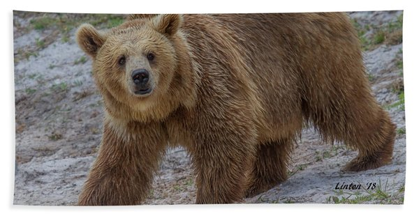 Bath Towel featuring the photograph Brown Bear 3 by Larry Linton