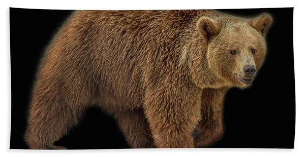 Bath Towel featuring the photograph Brown Bear 5 by Larry Linton