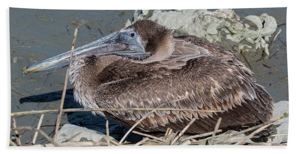 Brown Pelican 3 March 2018 Bath Towel