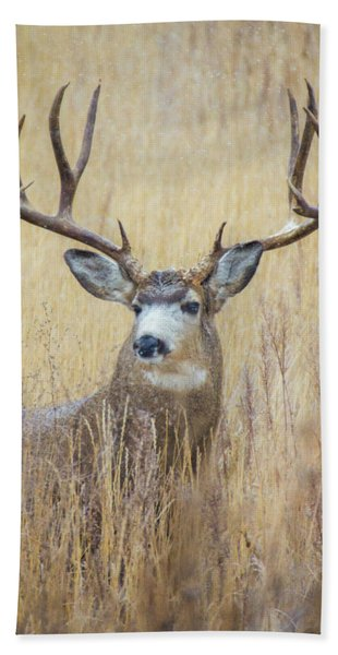 Hand Towel featuring the photograph Buck In Snow by John De Bord