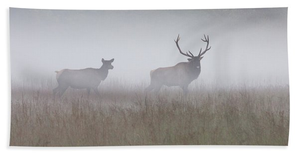 Bull And Cow Elk In Fog - September 30 2016 Hand Towel