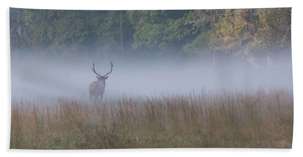 Bull Elk Disappearing In Fog - September 30 2016 Bath Towel