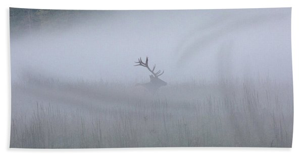 Bull Elk In Fog - September 30, 2016 Hand Towel