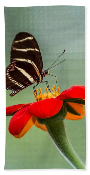 Bath Towel featuring the photograph Butterfly Zebra Longwing On Zinnia by Patti Deters