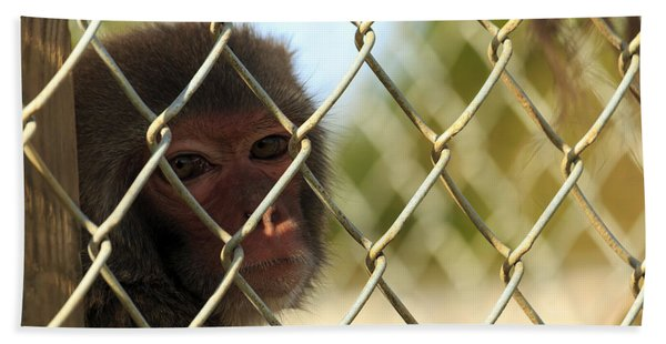 Caged Monkey Hand Towel