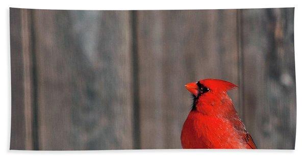 Cardinal Drinking Bath Towel