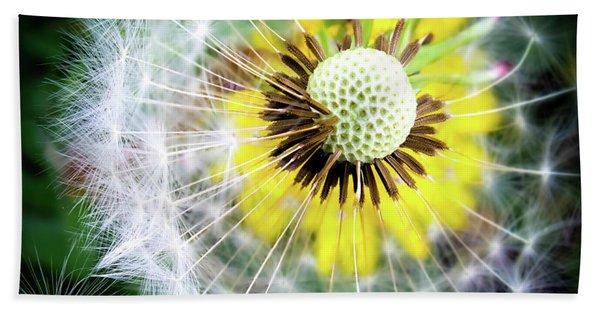 Celebration Of Nature Hand Towel