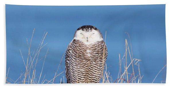 Centered Snowy Owl Bath Towel
