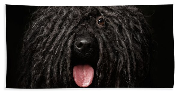 Close Up Portrait Of Puli Dog Isolated On Black Hand Towel