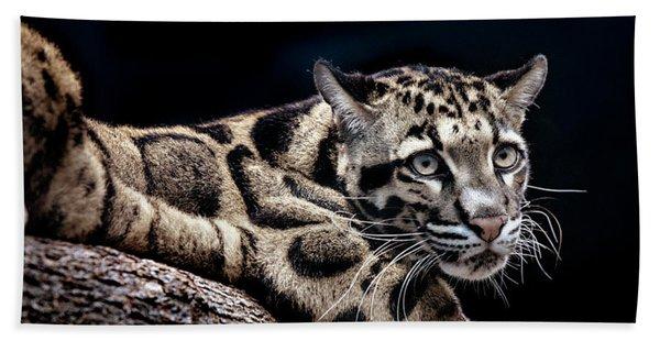 Clouded Leopard Hand Towel