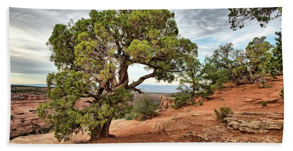 Colorado National Monument Hand Towel