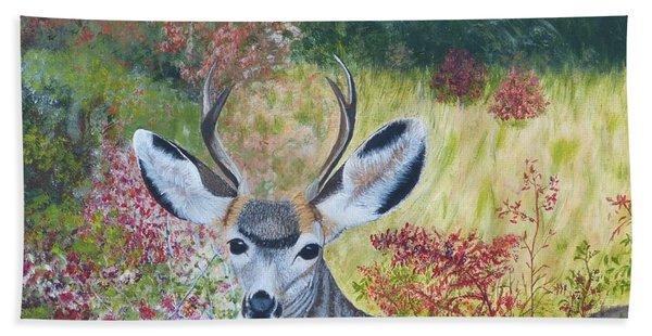 Colorado White Tail Deer Hand Towel