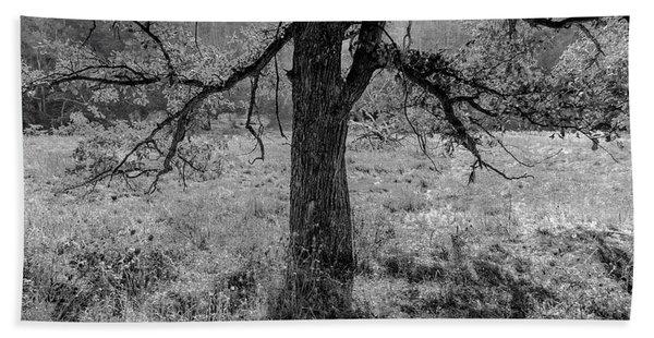 Coulee Oak Bath Towel