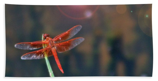 Crackerjack Dragonfly Hand Towel