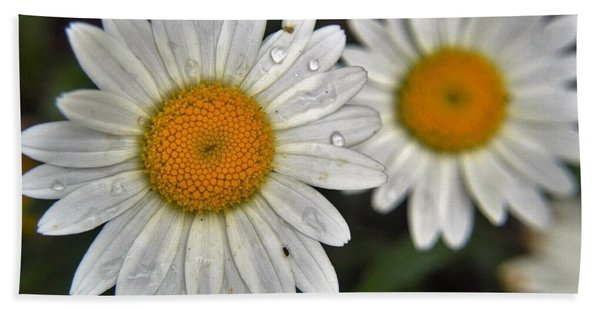Daisy Dew Bath Towel