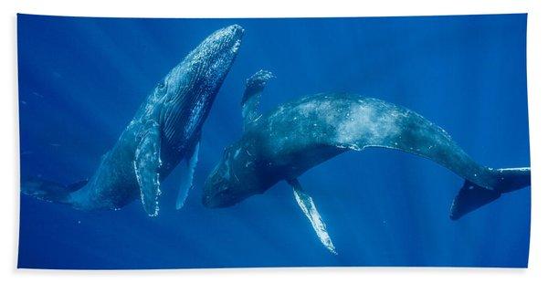 Dancing Humpback Whales Bath Towel