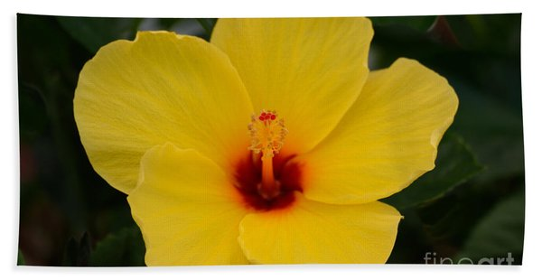 Decorative Floral Photo A9416 Bath Towel