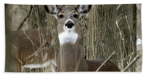Deer In The Forest Hand Towel
