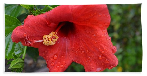 Dew On Flower Bath Towel