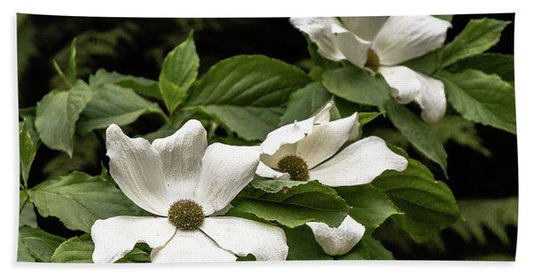 Dogwood Blossoms Hand Towel