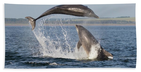 Dolphins Having Fun Hand Towel