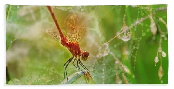 Dragonfly Dance Bath Towel