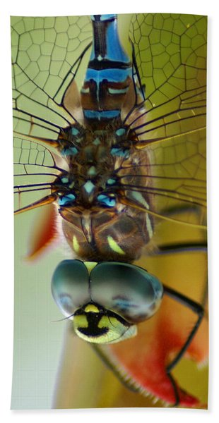 Dragonfly In Thought Bath Towel
