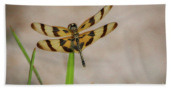 Bath Towel featuring the photograph Dragonfly On Grass by Tom Claud