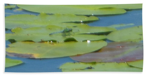 Dragonfly On Lily Pad Hand Towel