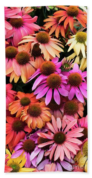 Echinacea Colour Bath Towel