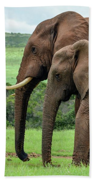 Elephant Couple Profile Hand Towel