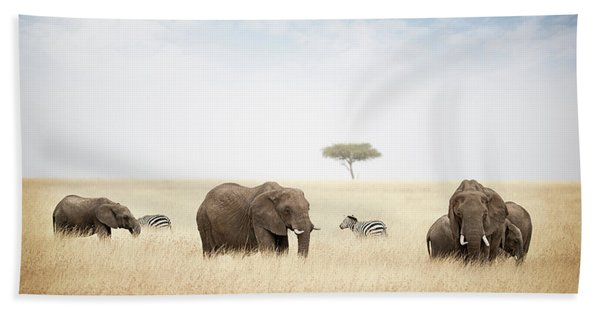 Elephants Grazing In Kenya Africa Hand Towel